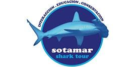 sotamar shark tour interaccion conservacion y educacion