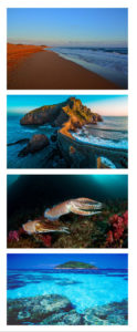 Summary Diving Magazine 13