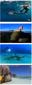 diving magazine